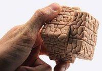 Здоровый головной мозг до дней последних